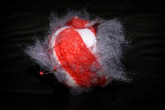 OOPS!!, Dropped my Candy (Luke Y.) Tags: ribbet macromonday picktwo fuzzy candy red white fuzz lint dropped lowkey sweet