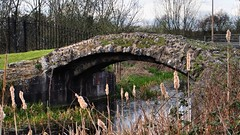Stony Bridge, c1370, and Cornmill Stream - Waltham Abbey, Essex, England. (edk7) Tags: olympuspenliteepl5 edk7 2016 uk england essex walthamabbey augustinianabbeyofholycross architecture building oldstructure medieval cloud lawn tree brick stone arch abandoned ruin stonybridgec1370 cornmillstream river country rural countryside