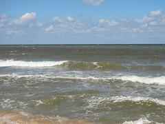 IMG_5778 (Бесплатный фотобанк) Tags: азовское море пляж россия краснодарскийкрай