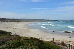 The beach at Asilomar (afagen) Tags: california pacificgrove asilomarstatebeach montereypeninsula asilomar beach pacificocean ocean