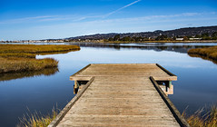 Arrowhead Marsh (channel locks) Tags: california states nikonz7 oakland arrowheadmarsh mlkbirdrefuge