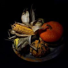 autumn composition (luporosso) Tags: natura nature naturaleza naturalmente nikon nikonitalia nikond500 zucche zucca pumpkin stilllife mais corn naturamorta still life
