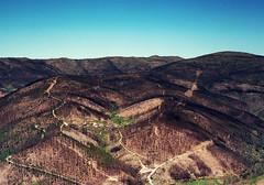 Schuld / Guilt (lebre.jaime) Tags: highland mountain mountainrange desolation fire devastation portugal beira kodak ektar100 contax g2