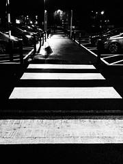Night Car Park (cycle.nut66) Tags: blackandwhite monochrome grayscale car park olmpus epl1 evolt micro four thirds mzuiko grainyfilmartfilter light shadow tarmac zebra road crossing