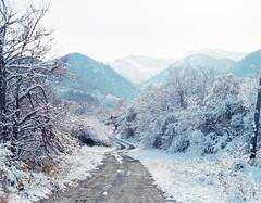 Image 1 98.jpg (samorodovs) Tags: ektar100 алмаата pentax6x7 ektar pentax 6x7 film 120mm kodak snow mountain almaty