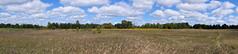 Maybury-State-Park-Pana_Northville-MI_09-15-2011a (Count_Strad) Tags: mayburystatepark maybury state park northville michigan mi fallcolor field