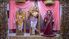 Radha Krishna Shayan Darshan on Tue 20 Nov 2018 (bhujmandir) Tags: radha krishna dev lord maharaj swaminarayan hari bhagvan bhagwan bhuj mandir temple daily darshan swami narayan shayan