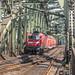 143 216-0 DB Regio Köln 26.07.09