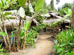 Long necked women Chang Mai Village (Maurizio Esitini) Tags: thailand chang mai long neck head woman kayan tribe