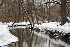 Small River (gubanov77) Tags: river snow winter forest tree trees nature churilihariver kuzminki lublino moscow russia february water landscape