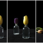 Tulips Triptych thumbnail