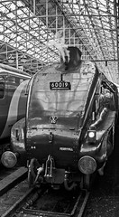 Bittern at the blocks (Nigel Valentine) Tags: 60019 bittern manchester piccadilly a4 gresley