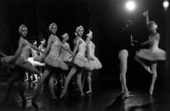 Russian Ballet (Yuri Kuchumov) Tags: filmcamera leitzcamera leitz leicarussia leicacl leica portrait film onalog russianfilm skan bw blackandwhite blackwhite vittagecamera vintageanalog m6 summicron collapsible m39 ballet russianballet dance dancer theatre swan lake kodak arista premium