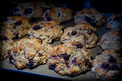 Blueberry Muffins (Just Out) (brucetopher) Tags: blueberry muffins blueberries bake baking cook cooking food fresh fruit berry berries baked breakfast delicious good tasty muffin purple blue cinnamon sweet cakes