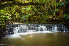 Somewhere in Catlins (Jan Lojek) Tags: catlins southisland new zealand forest river stream waterfall falls bush long exposure