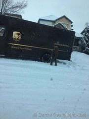 January 28, 2019 - Not a great day to be a delivery driver. (Darcie Castigliano-Ball)