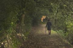 st (nicolamarongiu) Tags: bosco albero erba man umbrella peluche pupazzo fantasy camminare landscape vision visioni fantasia cappello surrealismo surreal colori sognare sentiero foresta forest