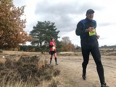 haarlerbergloop 10 km (80)