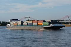 GMS Marajo - ENI 2325828 (5B-DUS) Tags: gms marajo eni 2325828 synthese ship binnenschiff schiff barge vessel rhein