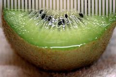 Pettinando i kiwi (meghimeg) Tags: 2018 genova kiwi dootsandstrips macromonday pallini strisce pettine comb