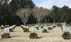 171216-F-TJ728-1083 (wreathsacross) Tags: 6amw 6airmobilitywing macdillafb macdill wreathsacrossamerica nationalcemetery floridanationalcemetery bushnellflorida bushnell florida remember veterans holidays unitedstates us
