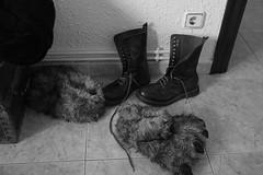Día 433 (acido askorbiko) Tags: shoes boots slippers contrast home blackandwhite blacknwhite landscape landscapephotography landscapelovers landscapehunter landscapes photography photographer noedit nofilters sinfiltros canon7d canonphotography canonespaña canonusa