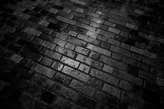 _DSC3887.jpg (stevemarleyphoto) Tags: southbank london photowalk england unitedkingdom gb