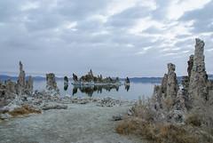 20140123_mono_lake_008 (petamini_pix) Tags: monolake california tufa lake reflection landscape water