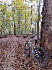 2018 Bike 180: Day 183 - Creek Trail (mcfeelion) Tags: cycling bike bicycle mtb annandaleva wakefieldpark autumn bike180 2018bike180