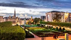 Mont des Arts (cedant1) Tags: brussels bruxelles bruxellesmabelle montdesarts bluehour sunset d750 nikkor24120f4 fx city capital lights parc
