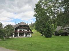 Dans la forêt noire (Micheline Canal) Tags: allemagne bavière maison couleur église château paysage landscape water chutedurhin