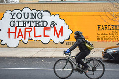 Central Harlem, New York (Quench Your Eyes) Tags: centralharlem ny ps180 younggiftedharlem explorebybike explorenyc harlem manhattan newyork newyorkcity nyc ronalddraperart streetart uppermanhattan urbanart wallart