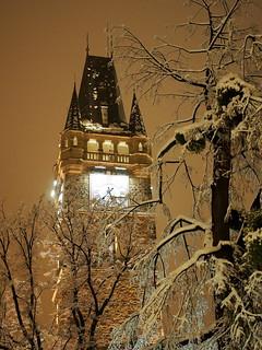 tli este / winter evening