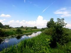 Икорец - небольшая речка с кристально с чистой водой. То, что нужно после ночной дороги в поезде! Накупался от души!