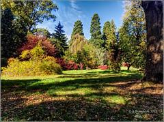 Batsford 2018_38 (johnzsv) Tags: batsford batsfordarboretum gloucestershire england olympus em1mk2 landscape arboretum trees autumn autumncolour outdoor