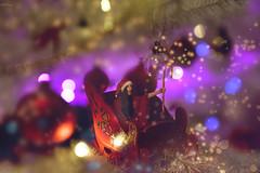 Forward! (Felicia Brenning) Tags: forward sleigh sledge christmassleigh christmas merrychristmas xmas festive merry fun christmastree xmastree ornaments jul swedish bokeh candycane happyholidays tinypeople tiny borrower borrowers miniperson miniscene miniaturescene minipeople miniaturephotography miniature photomanipulation manipulation surreal surrealism surrealphotography surreality photoart photographyart artphotography fantasy fantasyphotography fairytalephotography fairytale fairylights selfie selfportrait selfportraiture fineart fineartphotography creative creativephotography imagination imaginative magicrealism magicalrealism nikon nikond5600 nikonphotography feliciabrenning flickr sleighride christmasphotography