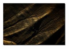 Paysage G32 Dg4 Rz Bd Rd1 _MG-7336 (thierrybarre) Tags: badlands landscape mood graphisme lignes montagnes vieux érosion texture rhinoceros élephant peau cuir tanné ancien