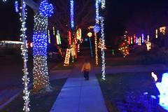 DSC_4951 (earthdog) Tags: 2018 needstags needstitle nikon nikond5600 d5600 18300mmf3563 christmas decoration light christmaslight sanjose willowglen