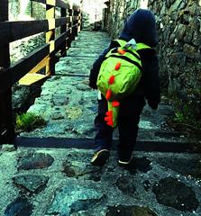 20181112_105739 (viki.dilova) Tags: backpack tourist maglic tvrdjava dragon zmajcic srbija