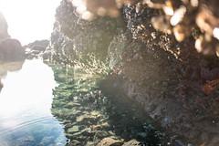 Coastal Colors (Rebecca Haranczak) Tags: ocean refelction dof leica leicaq oregon coast pnw
