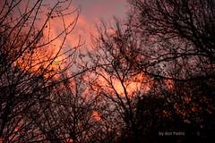 goedemorgen (Don Pedro de Carrion de los Condes !) Tags: donpedro d700 sunrise wolken kleurig geweldig kleurrijk