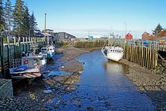 DSC03408 - Halls Harbour