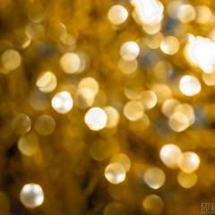 golden light dots -explore- (MAICN) Tags: 2018 square x100f licht macromondays fujifilm light nahaufnahme punkte quadratisch macromonday makro fuji dots macro lights lichter mm stripes dotsandstripes