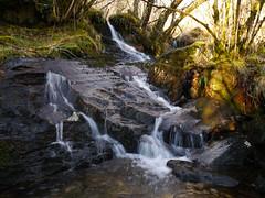 Glasdrum National Nature Reserve (Niall Corbet) Tags: scotland argyll nnr nationalnaturereserve glasdrum waterfall