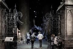 The Forbidden Forrest (Edd144) Tags: harry potter studio tour london philosophers stone chamber secrets prisoner azkaban goblet fire order phoenix half blood prince deathly hallows movies books film behind scenes magic wizard witch sorcerer