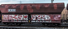 54_2019_01_18_Gelsenkirchen_Schalker_Verein_0275_802_RBH_802_mit_Falns ➡️ Wanne-Eickel (ruhrpott.sprinter) Tags: ruhrpott sprinter deutschland germany allmangne nrw ruhrgebiet gelsenkirchen lokomotive locomotives eisenbahn railroad rail zug train reisezug passenger güter cargo freight fret schalkerverein schalker abrn atlu db erb rbh rpool sbbc vl 0077 0275 0422 0426 0429 0650 0826 1232 1273 3294 4482 6101 6145 6146 6185 6189 6193 9110 re rb sbahn mond habitat hunde logo natur outdoor graffiti