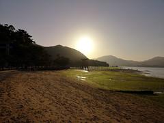 Hatsukaichi (bruno carreras) Tags: japon japan nippon isla island miyajima isukushima pagoda templo temple torii senjokaku hatsukaichi miyajimacho ciervo deer shika sol sun sunsen aterdecer puerto budismo budist