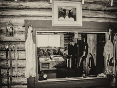 Rustic View (by Deborah K Photography) Tags: canada dustyroadphotos canons5 offgrid sepia simplicity cabin nopower ruralways canadian ruralliving ruralphotography countryliving dustyroadpics logcabin offgridlife tinyliving minimalism offthegrid antique simplelife rustic simpleliving