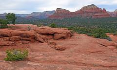 Sedona Arizona USA 2017 (Jeffrey Neihart) Tags: jeffreyneihart landscape nikon1680284 nikond7200 sandstone sandy redrock redroad cactus scrubbrush horizon arizona sedonaarizona hike hiking