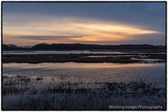 Bombay Hook Wildlife Refuge (Working Image Photography) Tags: sunset bombayhook wildliferefuge delaware